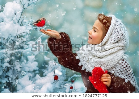 Christmas vintage postcard with bullfinch bird Stock photo © Sonya_illustrations