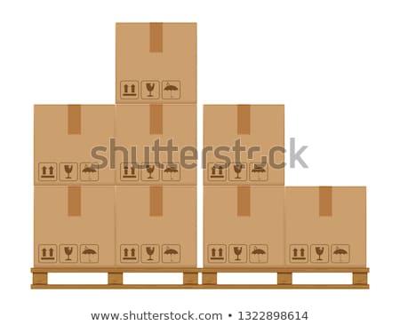 Kutu yalıtılmış ikon stil global Stok fotoğraf © studioworkstock