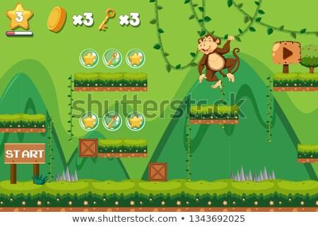 ingesteld · aap · karakter · activiteit · illustratie · achtergrond - stockfoto © bluering