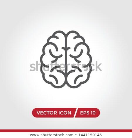 Cervello icona semplice isolato moderno salute Foto d'archivio © kyryloff
