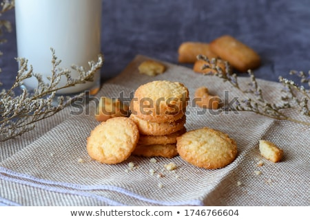 Capriccioso cookies latte alimentare set up Foto d'archivio © Walmor_