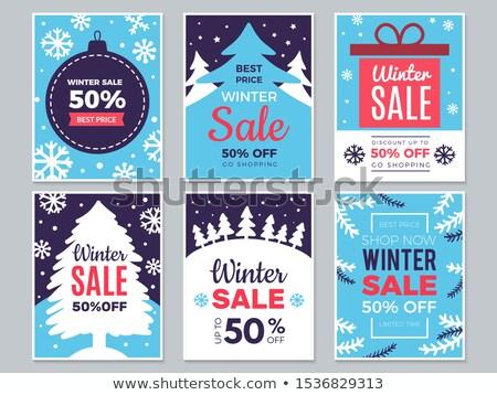 Stock fotó: Nagy · karácsony · ünnep · vásár · tél · szett