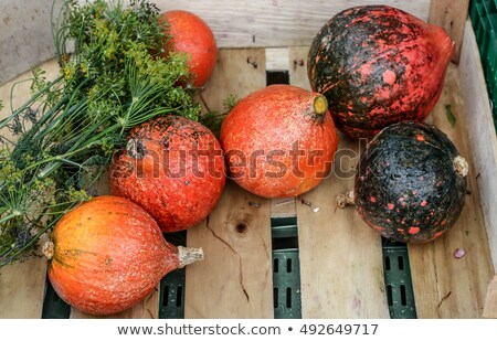 pumpkin and red kuri squash on wooden background Stock photo © dolgachov
