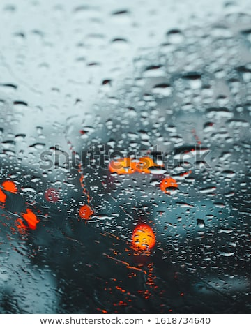Regenachtig nacht vijver natuur illustratie boom Stockfoto © colematt