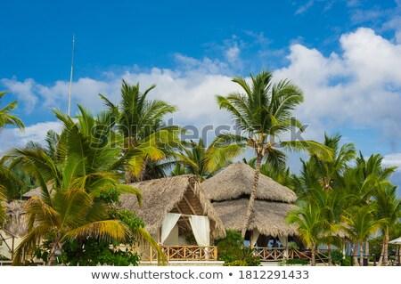 República Seychelles bandeira secar terra terreno Foto stock © grafvision