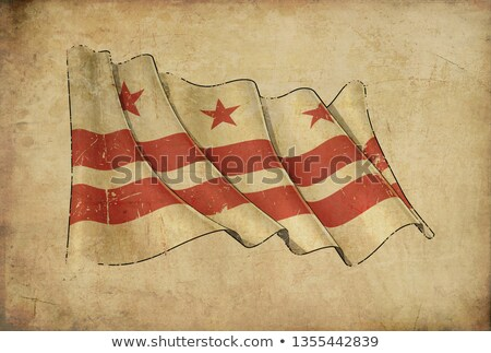 Papyrus vlag Washington DC illustratie Stockfoto © nazlisart