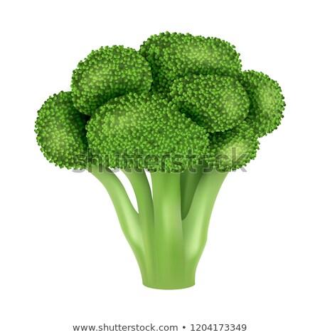 Fresh broccoli icon. Realistic illustration of fresh broccoli vector icon for web design Stock photo © MarySan