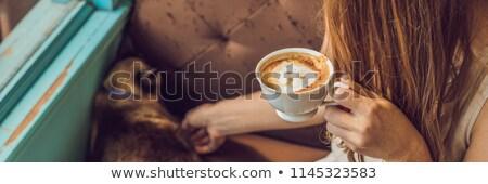 幸せ · 女性 · コーヒー · 猫 · ベッド · ホーム - ストックフォト © galitskaya