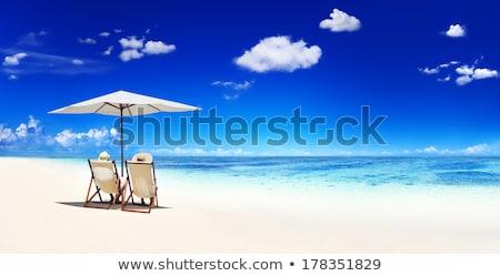 jonge · vrolijk · paar · ontspannen · tropisch · strand · strand - stockfoto © konradbak