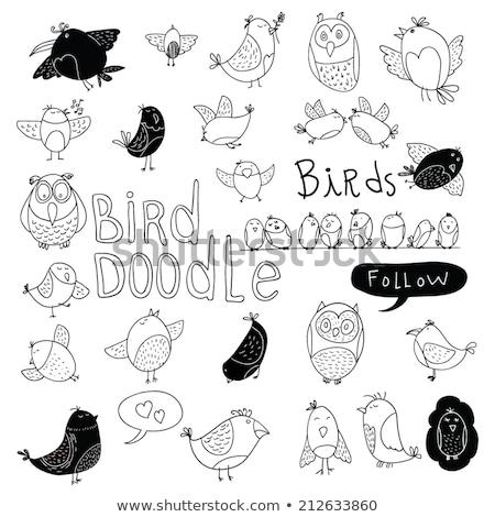 Schets cute vogel doodle stijl vector Stockfoto © Arkadivna