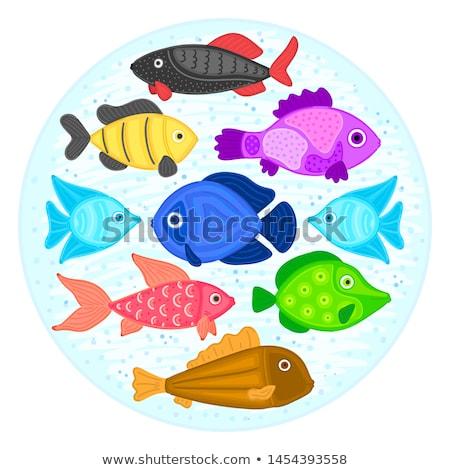 Vector colorful cartoon fish in circular shape. Undersea world. Aquarium. Cute marine life. Pisces Stock photo © user_10144511