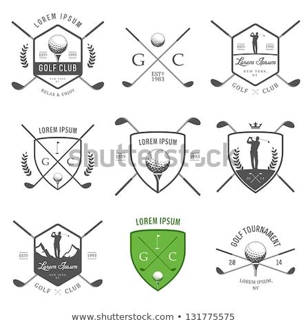 Set vintage golf etichette badge eps Foto d'archivio © netkov1