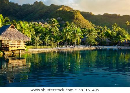 Bungalov başvurmak fransız polinezya seyahat turizm Stok fotoğraf © dolgachov