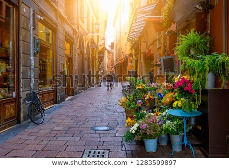 ulicy · wąski · historyczny · centralny · drogowego · budynku - zdjęcia stock © borisb17