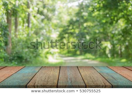 Seçilmiş odak boş ahşap masa görmek yeşil Stok fotoğraf © Freedomz