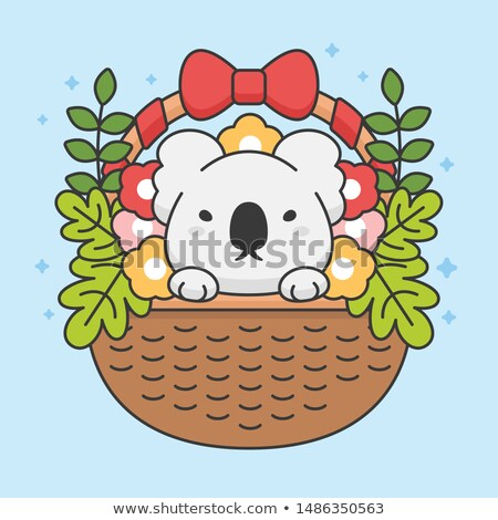 Cute koala in a basket with flowers and leaves stock photo © amaomam