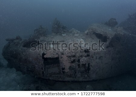 Sunken plane on ocean bottom Stock photo © jossdiim