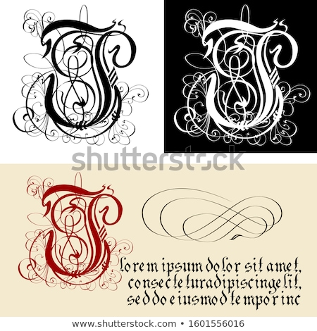 Dekoratív gótikus levél kalligráfia vektor eps8 Stock fotó © mechanik