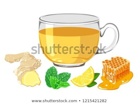 Banner ingredienti caldo tè zenzero limone Foto d'archivio © Illia