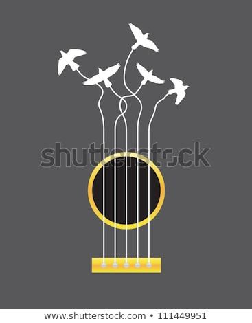 гитаре · акустический · изолированный · золото · природного - Сток-фото © mkm3