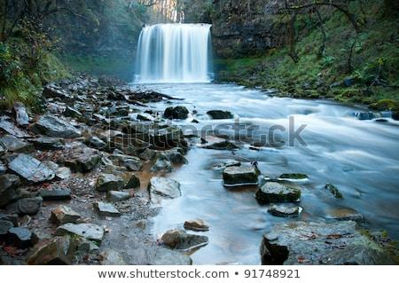 垂直 滝 ウェールズ クローズアップ 木材 森林 ストックフォト © backyardproductions