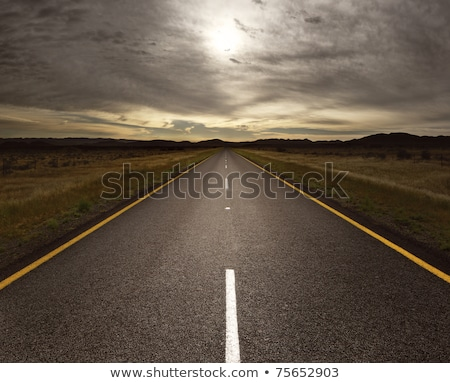 Straight tar road leading into the light Stock photo © ozaiachin
