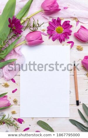 Lápices decorado madera espacio de la copia textura trabajo Foto stock © happydancing