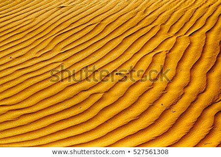 ひびの入った 泥 パターン テクスチャ ストックフォト © latent