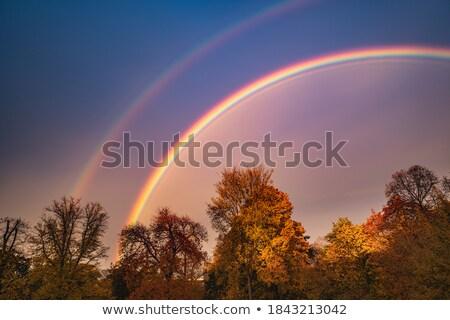 arco-íris · paisagem · pôr · do · sol · cidade · grama · natureza - foto stock © benkrut