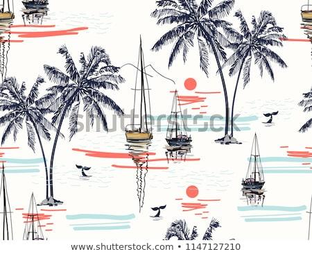 дерево парусника тропический пляж Сток-фото © zzve