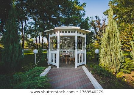 саду мрамор девушки дерево природы Сток-фото © ruzanna