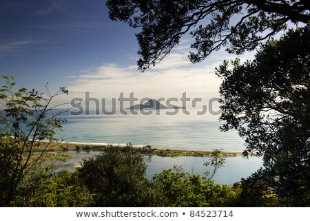 Walvis eiland vulkaan New Zealand Stockfoto © disorderly
