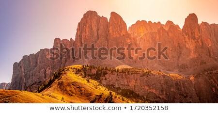 Nyár kilátás út természet hegy kék Stock fotó © Antonio-S