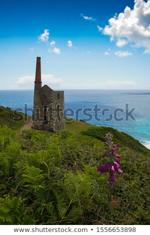 Wheal Prosper - Rinsey - Cornwall Stock photo © mosnell