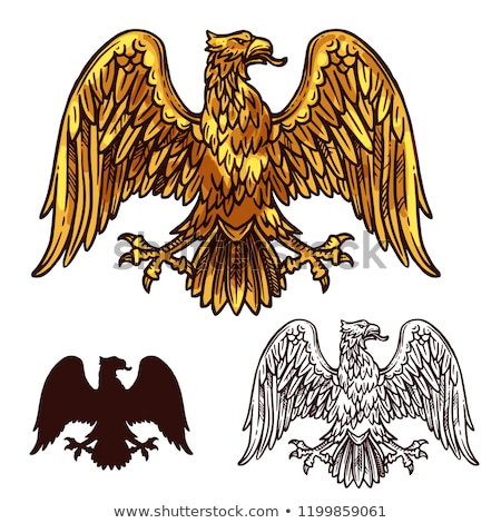 golden heraldic eagle stock photo © genestro