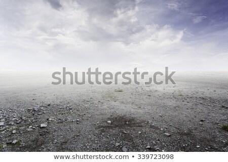 szürke · sóder · kavics · padló · textúra · felső - stock fotó © taviphoto