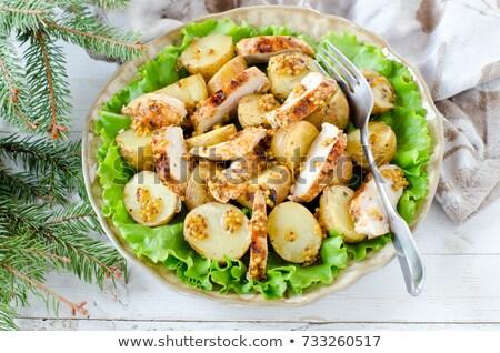 Verão salada fígado frito rabino legumes frescos Foto stock © doupix
