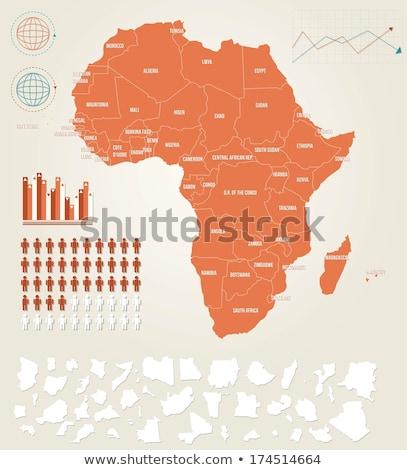 Afrika térkép Zambia zászló térképek gomb Stock fotó © Ustofre9