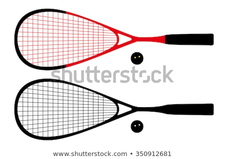 Squash racket sport in gym Stock photo © Kzenon