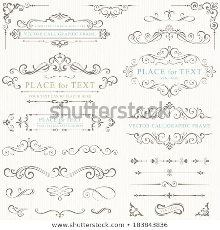Floral ornament design element Stock photo © adrian_n