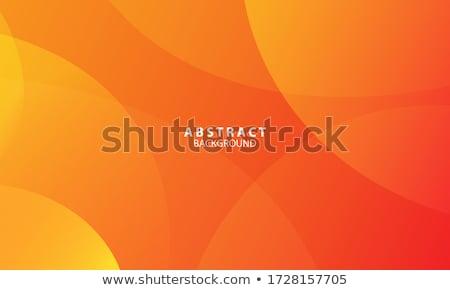 Soyut turuncu vektör dalgalar yalıtılmış iş Stok fotoğraf © artag