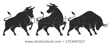 Estilizado negro toro mascota Foto stock © HunterX