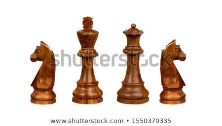 Lovag sakk alkat kézzel rajzolt rajz rajz Stock fotó © perysty