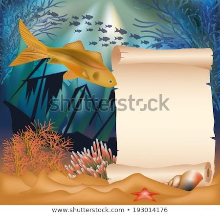 Onderwater kaart oude schip papier scroll Stockfoto © carodi