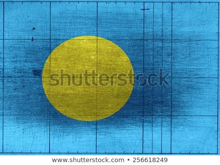 Palau bandeira idéia projeto textura Foto stock © kiddaikiddee