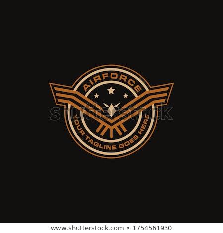 軍隊 バッジ 将来 特別 孤立した 空 ストックフォト © sahua