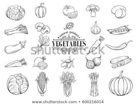 Set of hand drawn vegetables, potatoes, cucumber, tomato, carrot Stock photo © elenapro