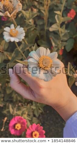 красивой Воспоминания мышления женщину глядя копия пространства Сток-фото © stockyimages