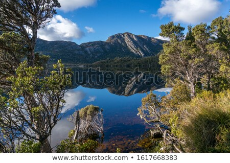 Wiege Berg Taube See Tasmanien schönen Stock foto © roboriginal