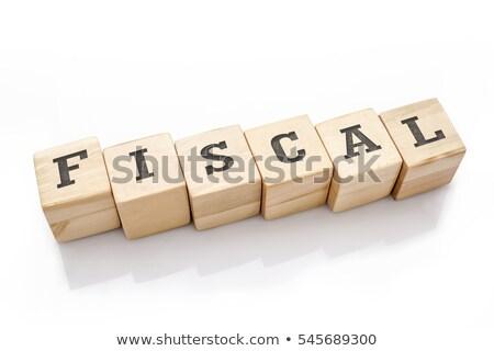 Fiscale woord woordenboek geld onderwijs Stockfoto © fuzzbones0